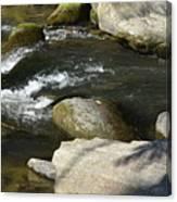 Broad River  Canvas Print