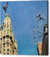 Broadway Pigeons No. 1 Canvas Print