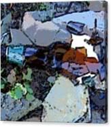Broken Bottle Canvas Print