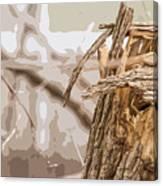 Broken Tree Base Canvas Print