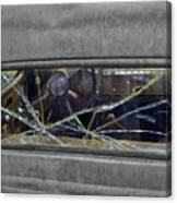 Broken Window Theory Canvas Print