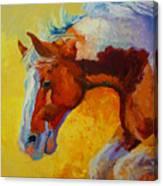 Bronc I Canvas Print