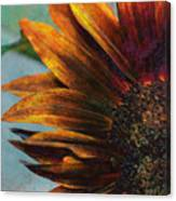 Bronzed By The Sun Canvas Print