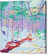 Brook In Winter, 1914 Canvas Print