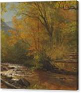 Brook In Woods Canvas Print