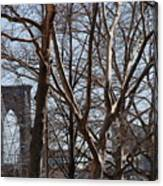 Brooklyn Bridge Thru The Trees Canvas Print