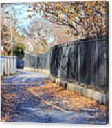 Brooklyn Park In Fall Canvas Print