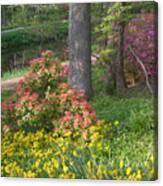 Brookside Gardens 8 Canvas Print