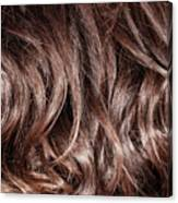 Brown Curly Hair Background Canvas Print