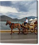 Brown Horse Drawn Carriage Canvas Print