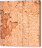 Brown Paint Texture Canvas Print