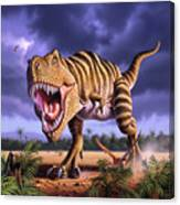 Brown Rex Canvas Print