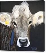 Brown Swiss Canvas Print