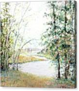 Brule River Canvas Print