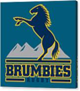 Brumbies Rugby Canvas Print