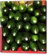 Brussel Sprouts , Cucumbers And Carrots Canvas Print