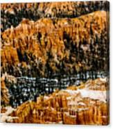 Bryce Canyon Series #3 Canvas Print