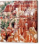 Bryce Canyon Hoodoos Canvas Print