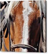 Bryce Canyon Horseback Ride Canvas Print