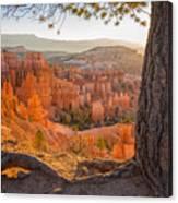 Bryce Canyon National Park Sunrise 2 - Utah Canvas Print