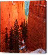 Bryce Canyon Sunrise Glow Canvas Print
