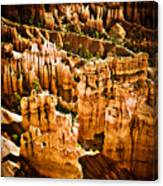 Bryce Canyon Vertical Image Canvas Print