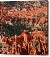 Bryce Canyon Vertical Canvas Print