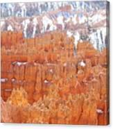 Bryce National Park Canvas Print
