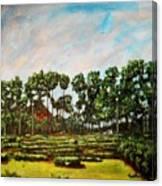 Btm Park Canvas Print