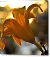 Bubble Blowing Flower Canvas Print