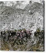 Bubble Falls Canvas Print