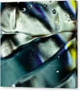 Bubbles 06 Canvas Print