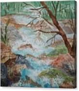 Bubbling Falls Canvas Print
