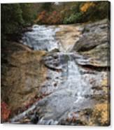 Bubbling Spring Branch Cascades Canvas Print