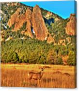 Buck And Flatirons Canvas Print