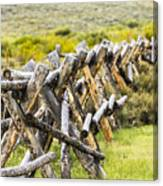 Buck And Rail Fence In The High Country Canvas Print