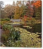 Buck Garden Fall Canvas Print
