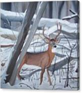 Buck In The Snow Canvas Print