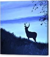 Buck Silhouette In Blue Canvas Print