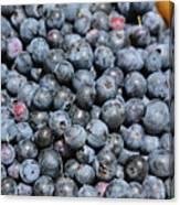 Bucket Of Blueberries Canvas Print