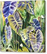 Bucket Of Purple Taro Canvas Print