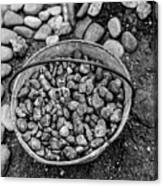 Bucket Of Rocks In Black And White Canvas Print