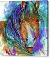 Bucky The Mustang In Watercolor Canvas Print