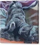 Bud Canvas Print