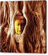 Buddha Of The Banyan Tree Canvas Print