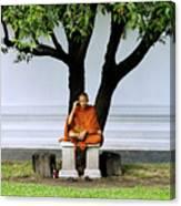 Buddhist Monk Sits Under Tree Canvas Print