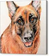 Buddy Canvas Print