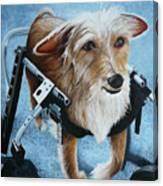 Buddy's Hope Canvas Print