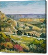 Buena Vista Canvas Print
