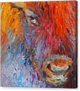 Buffalo Bison Wild Life Oil Painting Print Canvas Print
